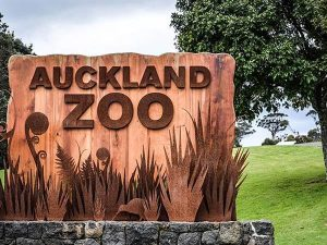 Auckland Zoo sign - ZIMS value