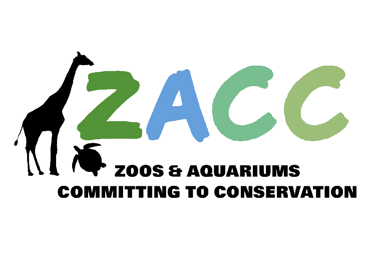 5 Creative Conservation Ideas From ZACC 2018