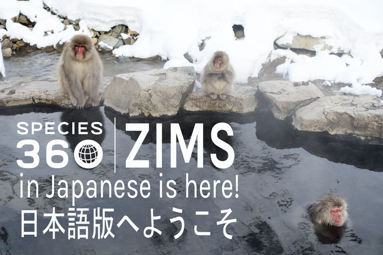 Japanese Language Version Of ZIMS Now Available!