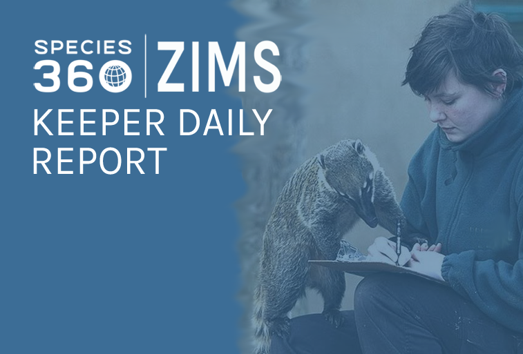 Keeper daily report blog feature