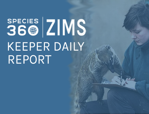 keeper daily report project