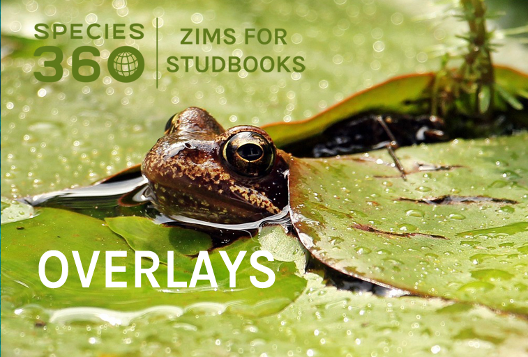 7 Key Features Of ZIMS For Studbooks Overlays