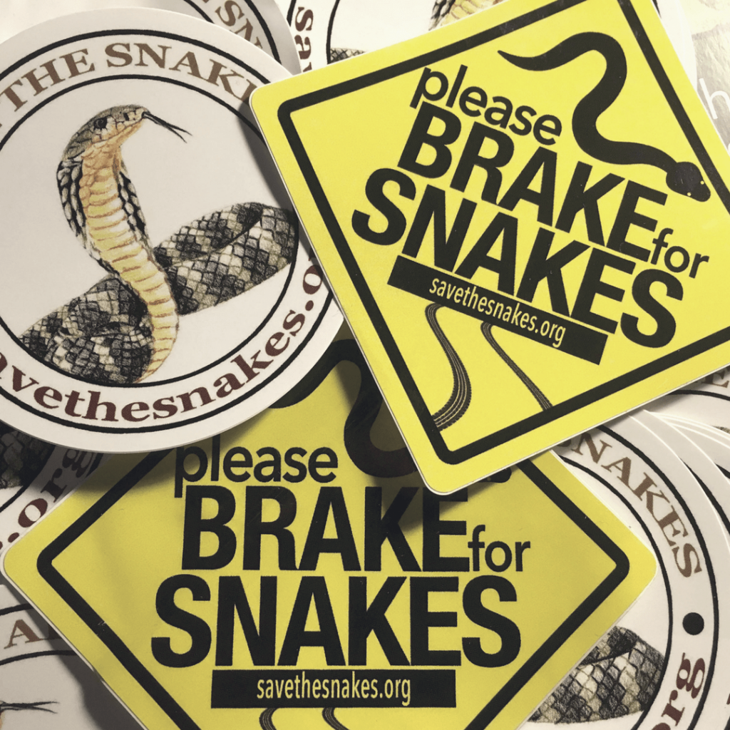 Image credit: Save the Snakes
