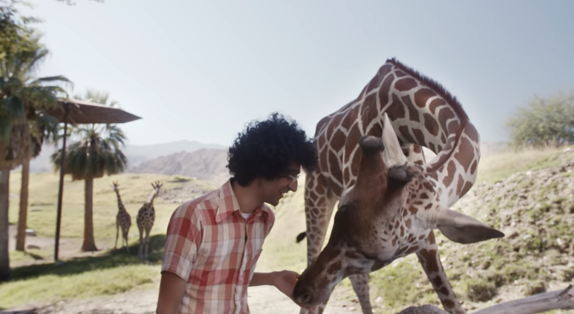 "Streaming On Netflix: Latif Nasser Visits The Living Desert Zoo To Ask, ""What Is A Studbook?"""