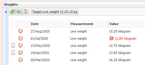 flagged-weight-1